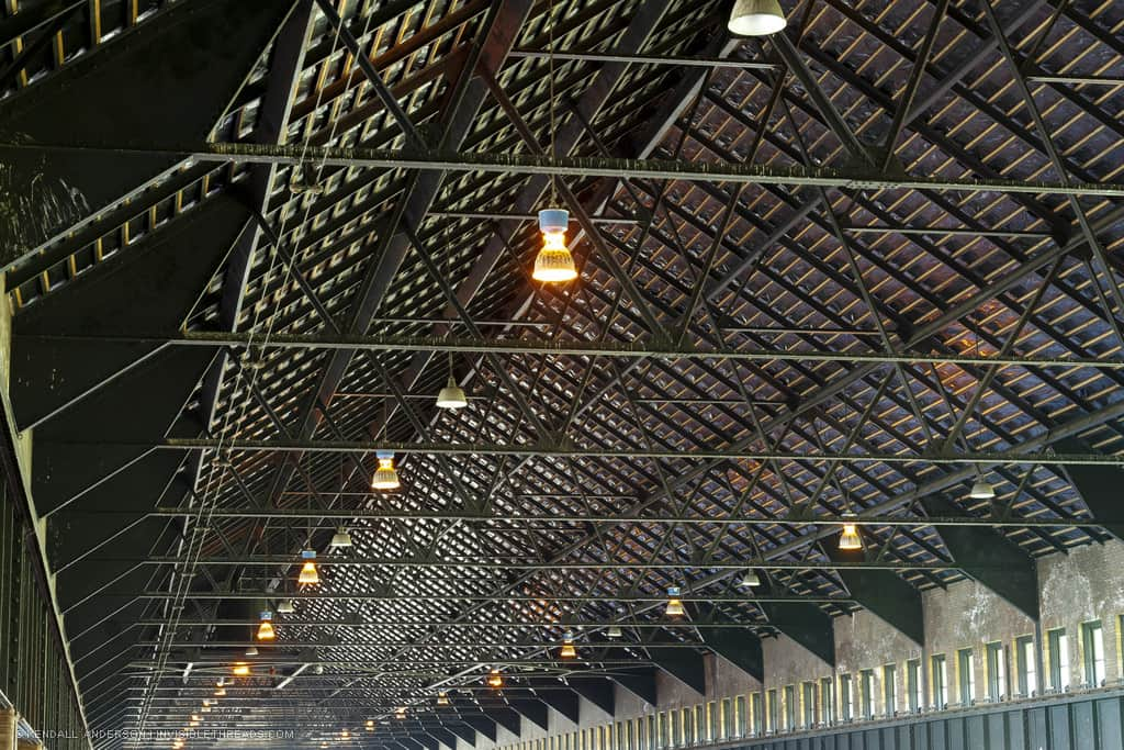 Steel triangular roof trusses extend the entire length of a building, viewed in perspective. Some small lighting fixtures hang from the ceiling, and many of the steel trusses are dirtied with bird poo.